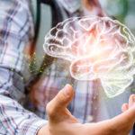 Neuroeconomía: ejemplos para aplicarla en tu empresa