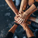 Cohesión grupal: clave en la producción y el rendimiento