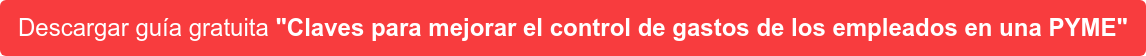 """Descargar guía gratuita """"Claves para mejorar el control de gastos de los  empleados en una PYME"""""""